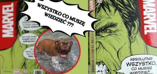 Marvel, Absolutnie WSZYSTKO, co musisz wiedzieć